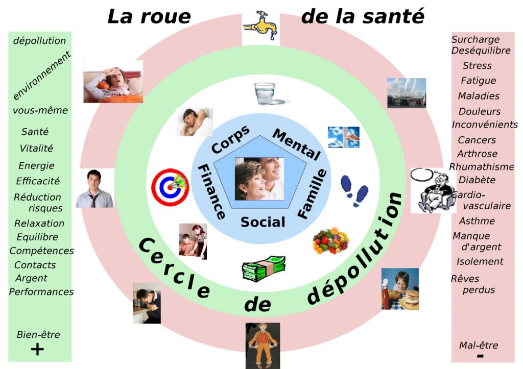 La roue de la santé